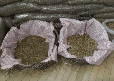 beta corn agro pelet